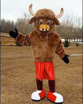 bull municipal mascot