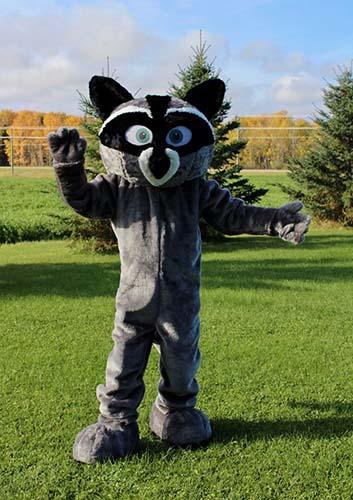 about custom mascot